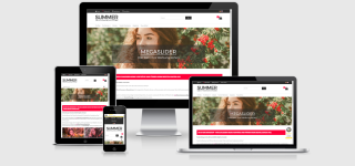 Modified Responsive Template SUMMER - Fashion, Schmuck & Lifestyle
